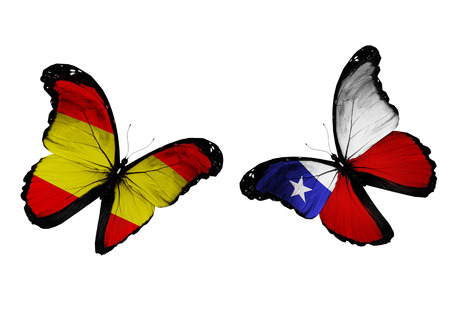 Concept - two butterflies with Spain and Chile flags flying, like two football teams playing