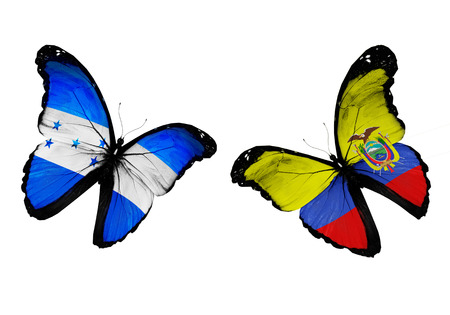 penalty flag: Concept - two butterflies with Honduras and Ecuador flags flying, like two football teams playing