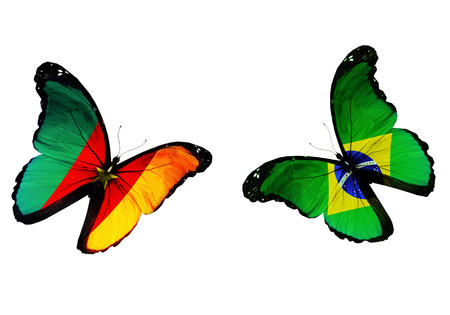 penalty flag: two butterflies with Cameroon and Brazil flags flying