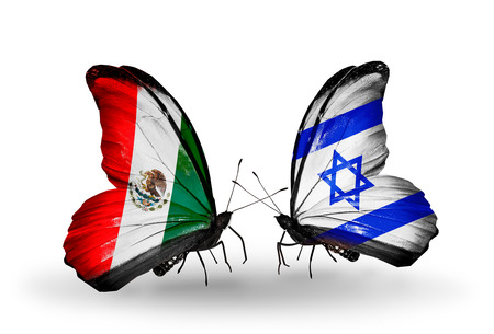 Two butterflies with flags on wings as symbol of relations Mexico and Israel photo