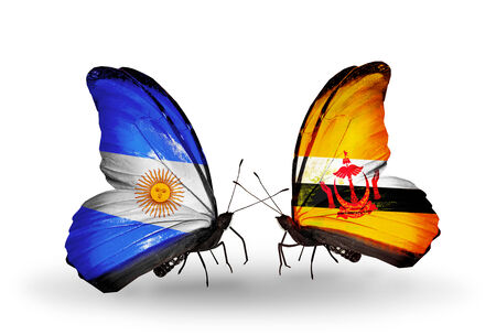 Two butterflies with flags on wings as symbol of relations Argentina and Brunei photo