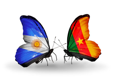 Two butterflies with flags on wings as symbol of relations Argentina and Cameroon photo