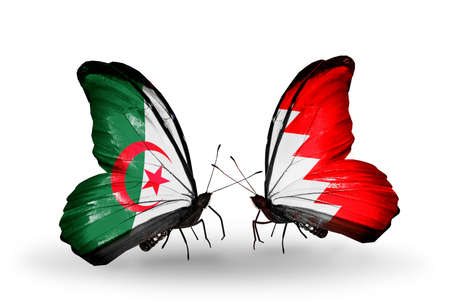 bahrain money: Two butterflies with flags on wings as symbol of relations Algeria and Bahrain Stock Photo