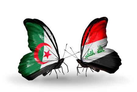 iraq money: Two butterflies with flags on wings as symbol of relations Algeria and Iraq Stock Photo