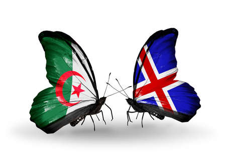 algerian flag: Two butterflies with flags on wings as symbol of relations Algeria and Iceland