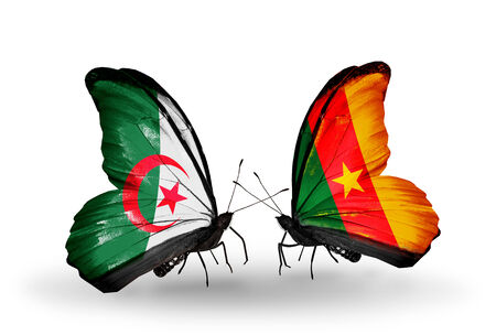 Two butterflies with flags on wings as symbol of relations Algeria and Cameroon photo
