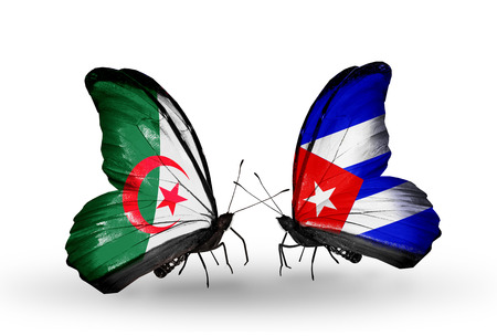 Two butterflies with flags on wings as symbol of relations Algeria and Cuba Stock Photo