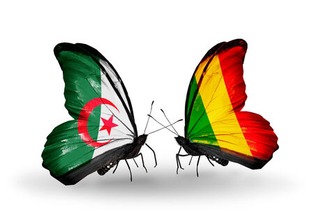 Two butterflies with flags on wings as symbol of relations Algeria and Mali photo