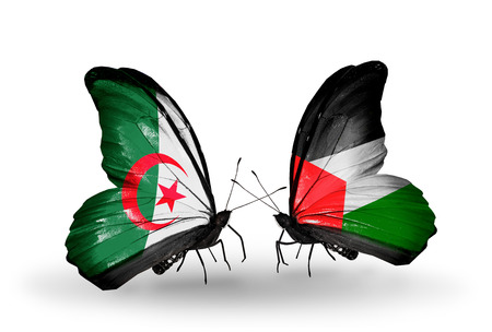 Two butterflies with flags on wings as symbol of relations Algeria and Palestine photo