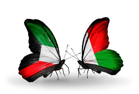 Two butterflies with flags on wings as symbol of relations Kuwait and Madagascar photo