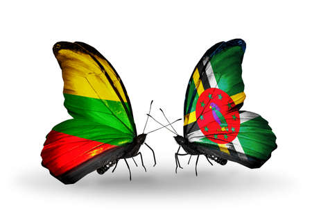 Two butterflies with flags on wings as symbol of relations Lithuania and Dominica photo