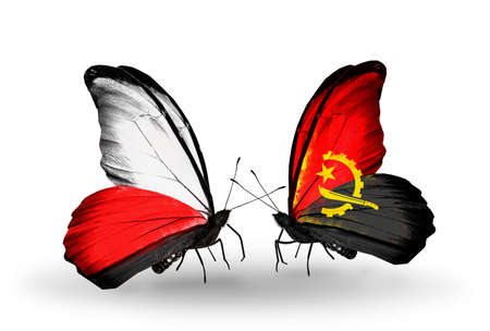 Two butterflies with flags on wings as symbol of relations Poland and Angola photo