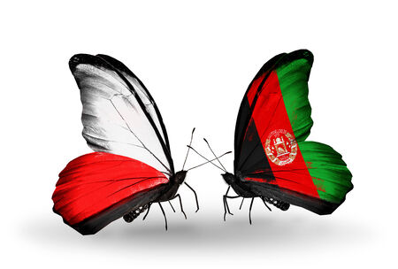 Two butterflies with flags on wings as symbol of relations Poland and Afghanistan photo