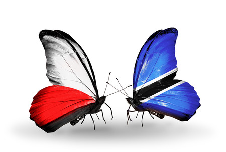 Two butterflies with flags on wings as symbol of relations Poland and Botswana photo