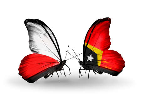 Two butterflies with flags on wings as symbol of relations Poland and East Timor photo