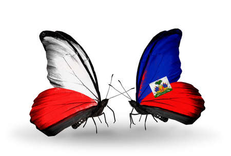 Two butterflies with flags on wings as symbol of relations Poland and Haiti photo