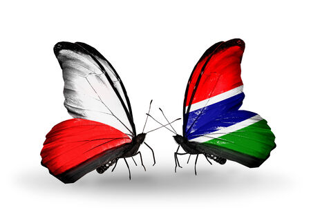 Two butterflies with flags on wings as symbol of relations Poland and Gambia photo