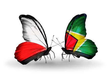 Two butterflies with flags on wings as symbol of relations Poland and Guyana photo