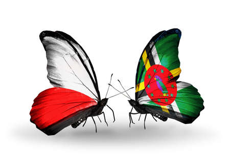 Two butterflies with flags on wings as symbol of relations Poland and Dominica photo