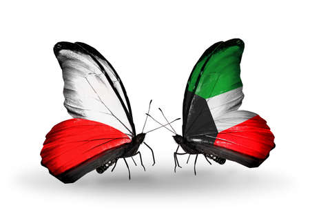 Two butterflies with flags on wings as symbol of relations Poland and Kuwait photo