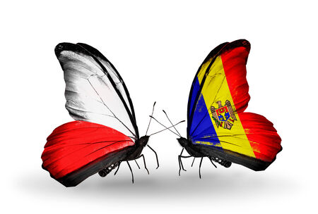 Two butterflies with flags on wings as symbol of relations Poland and Moldova photo