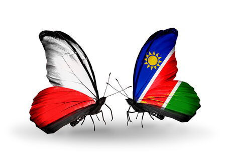 Two butterflies with flags on wings as symbol of relations Poland and Namibia photo