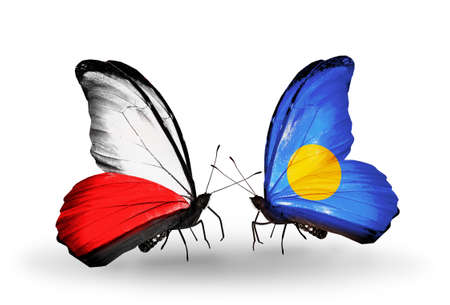Two butterflies with flags on wings as symbol of relations Poland and Palau photo
