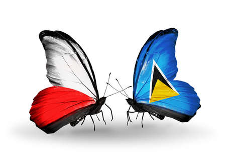 Two butterflies with flags on wings as symbol of relations Poland and Saint Lucia photo