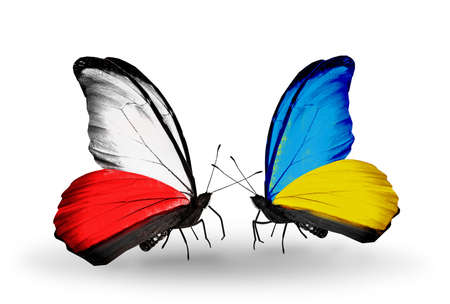Two butterflies with flags on wings as symbol of relations Poland and Ukraine photo
