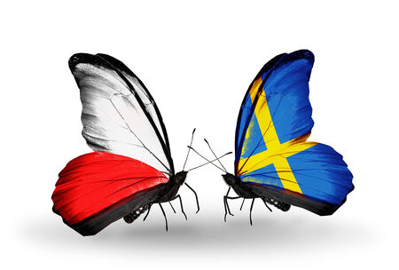 Two butterflies with flags on wings as symbol of relations Poland and Sweden photo