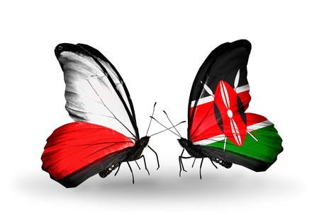 Two butterflies with flags on wings as symbol of relations Poland and Kenya photo