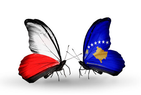 Two butterflies with flags on wings as symbol of relations Poland and Kosovo photo