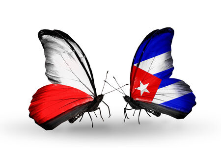 Two butterflies with flags on wings as symbol of relations Poland and Cuba