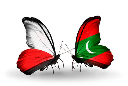 Two butterflies with flags on wings as symbol of relations Poland and Maldives photo