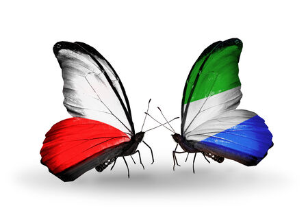 Two butterflies with flags on wings as symbol of relations Poland and Sierra Leone photo