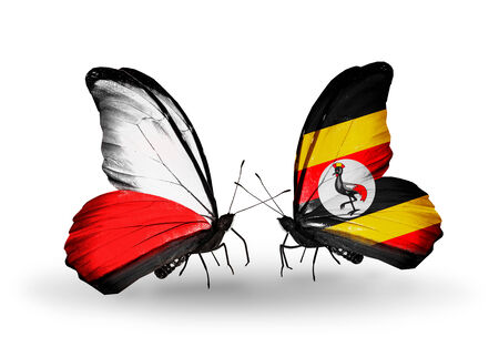 Two butterflies with flags on wings as symbol of relations Poland and Uganda photo