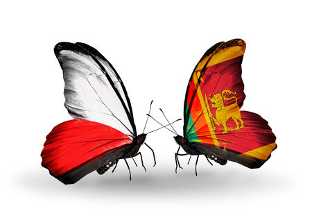Two butterflies with flags on wings as symbol of relations Poland and Sri Lanka photo