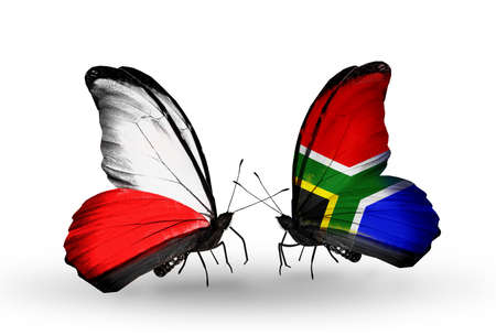 Two butterflies with flags on wings as symbol of relations Poland and South Africa photo