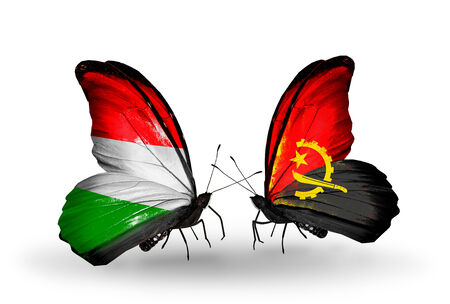 Two butterflies with flags on wings as symbol of relations Hungary and Angola photo
