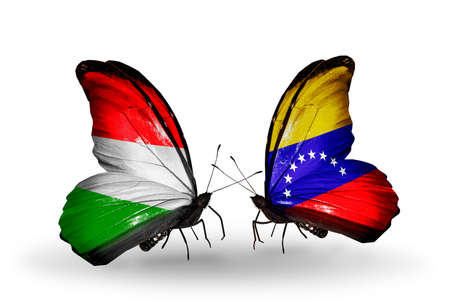 Two butterflies with flags on wings as symbol of relations Hungary and Venezuela photo
