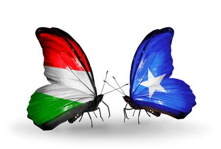 Two butterflies with flags on wings as symbol of relations Hungary and Somalia photo