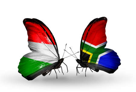 Two butterflies with flags on wings as symbol of relations Hungary and South Africa photo