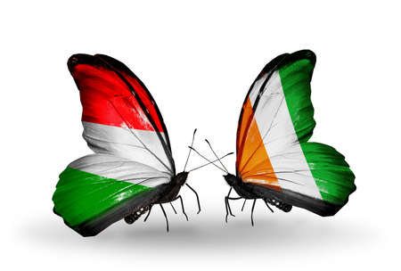Two butterflies with flags on wings as symbol of relations Hungary and Cote Divoire photo