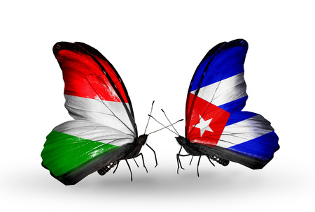 Two butterflies with flags on wings as symbol of relations Hungary and Cuba