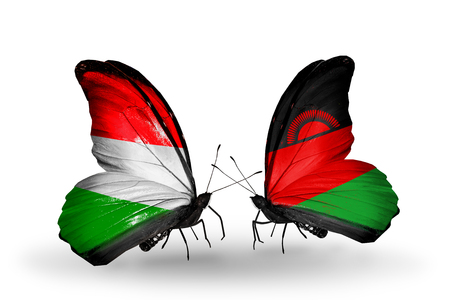 malawi flag: Two butterflies with flags on wings as symbol of relations Hungary and Malawi