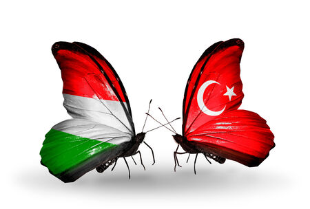 Two butterflies with flags on wings as symbol of relations Hungary and Turkey photo