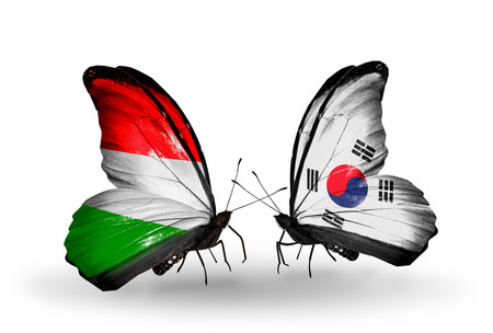 Two butterflies with flags on wings as symbol of relations Hungary and South Korea photo