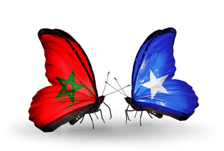 Two butterflies with flags on wings as symbol of relations Morocco and Somalia photo