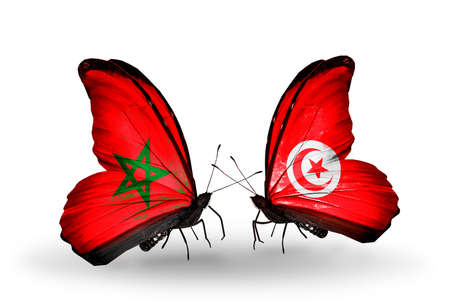 Two butterflies with flags on wings as symbol of relations Morocco and Tunisia photo