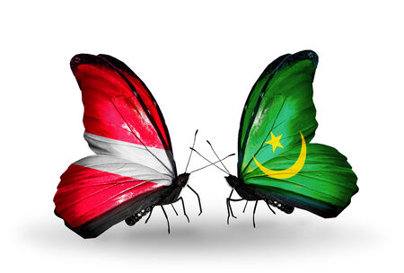 Two butterflies with flags on wings as symbol of relations Latvia and Mauritania photo